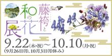 藤袴と秋の和の花展