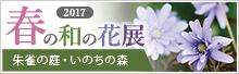 春の和の花展