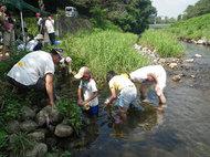 夏休みわんぱく自然教室「川であそぼう!水辺の探検・発見隊」(7月17日)募集中