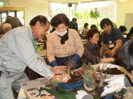 「正月の寄せ植え教室」の参加者を募集します(12/18開催)