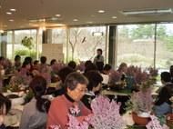 「春咲き草花の寄せ植え教室(3月25日)」の参加者募集