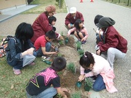 子どもの楽園に、花を増やす活動始めます