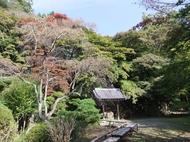 みどりの散策ツアー(大原野編)を開催します(11月23日)