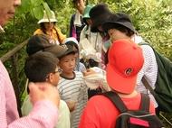 梅小路子ども自然観察会(子ども緑の学校)を開催します(12月1日~)