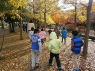 梅小路 子ども自然観察会 (子ども緑の学校) を開催します。
