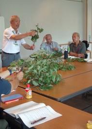 「家庭の庭づくり講習会」の参加者募集