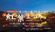 紅葉まつり(ライトアップ)を開催します。(11月22日~24日)のイメージ