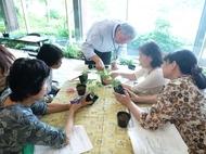 平成26年度後期園芸講習会 参加者募集のお知らせ