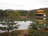 「京の庭めぐり~金閣寺」 参加者募集のお知らせ
