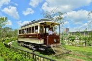 チンチン電車 夏休み期間の運行予定のイメージ