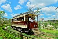 今年も夏休み期間中 チンチン電車運行しています。