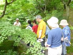 樹木と対話する教室のイメージ