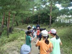 平成27年度 梅小路子ども自然観察会を開催します(5月~10月・全6回)のイメージ