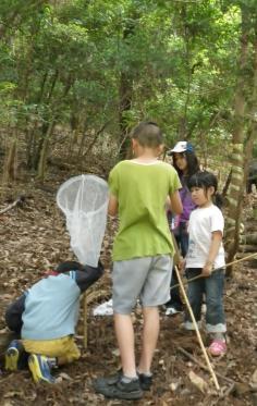 自然あそび教室 『虫たちの世界をたずねよう!』のイメージ