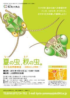 「夏の虫、秋の虫。」子ども自然観察会のイメージ