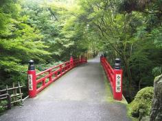 みどりの散策ツアー(今熊野~泉涌寺エリア)のイメージ