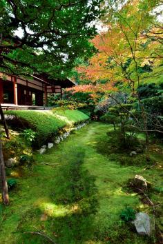 京の庭めぐり~第6回 妙心寺塔頭(桂春院・大法院)~のイメージ