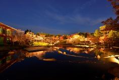 梅小路公園 紅葉まつり (11/19~29)のイメージ