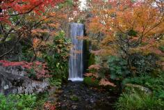 庭園ガイドツアーのイメージ