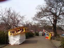 園内の桜①0330