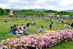 梅小路公園グリーンフェア2019春のイメージ