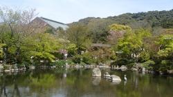 園内の桜0412