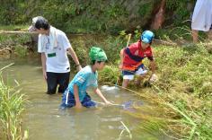 夏休みわんぱく自然教室「水辺の探検発見隊」のイメージ