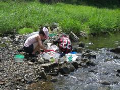 夏休みわんぱく自然教室『水辺の探検・発見隊』のイメージ