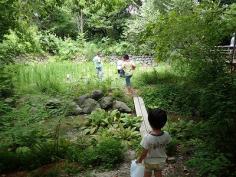 自然観察会のイメージ
