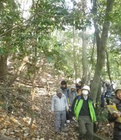 宝が池連続学習会2017  第5回『森の変容とくらしの安全 ~人がかかわり守る森のあり方を考える~』のイメージ