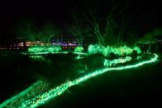 京都 冬の光宴2018(2/2~2/14)のイメージ