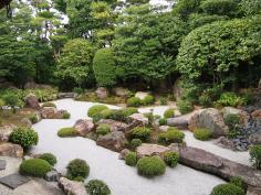 京の庭講座 2019<枯山水の庭~『妙心寺 東海庵・退蔵院』>のイメージ