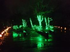 京都 冬の光宴2019(2/1~2/14)のイメージ