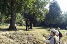 緑の散策ツアー(円山公園周辺)のイメージ