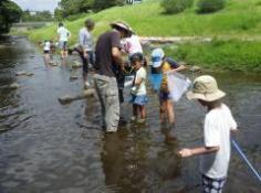 夏休みわんぱく自然教室「水辺のいきもの発見隊」のイメージ