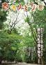 広報誌「京のみどり」2014年秋 72号