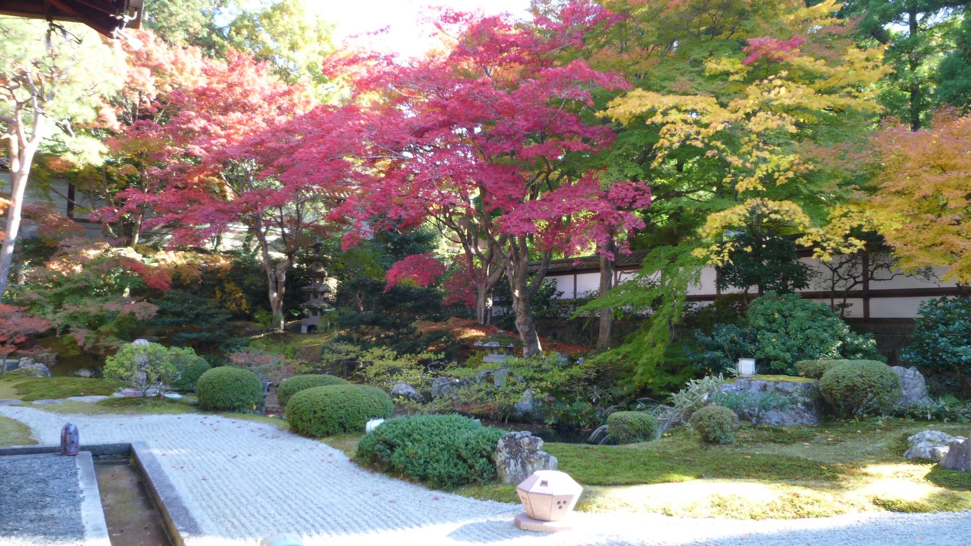 泉涌寺御座所の庭の画像