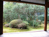 地蔵院(竹の寺)庭園