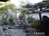 大仙院の庭園