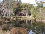大原野神社神苑・鯉沢の池
