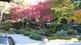 泉涌寺御座所の庭