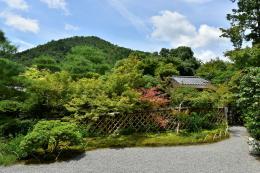 光悦寺庭園