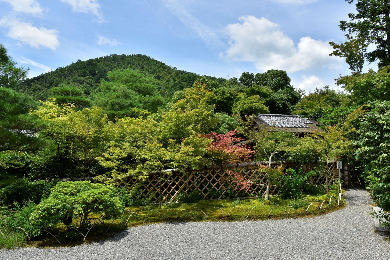 光悦寺庭園の画像