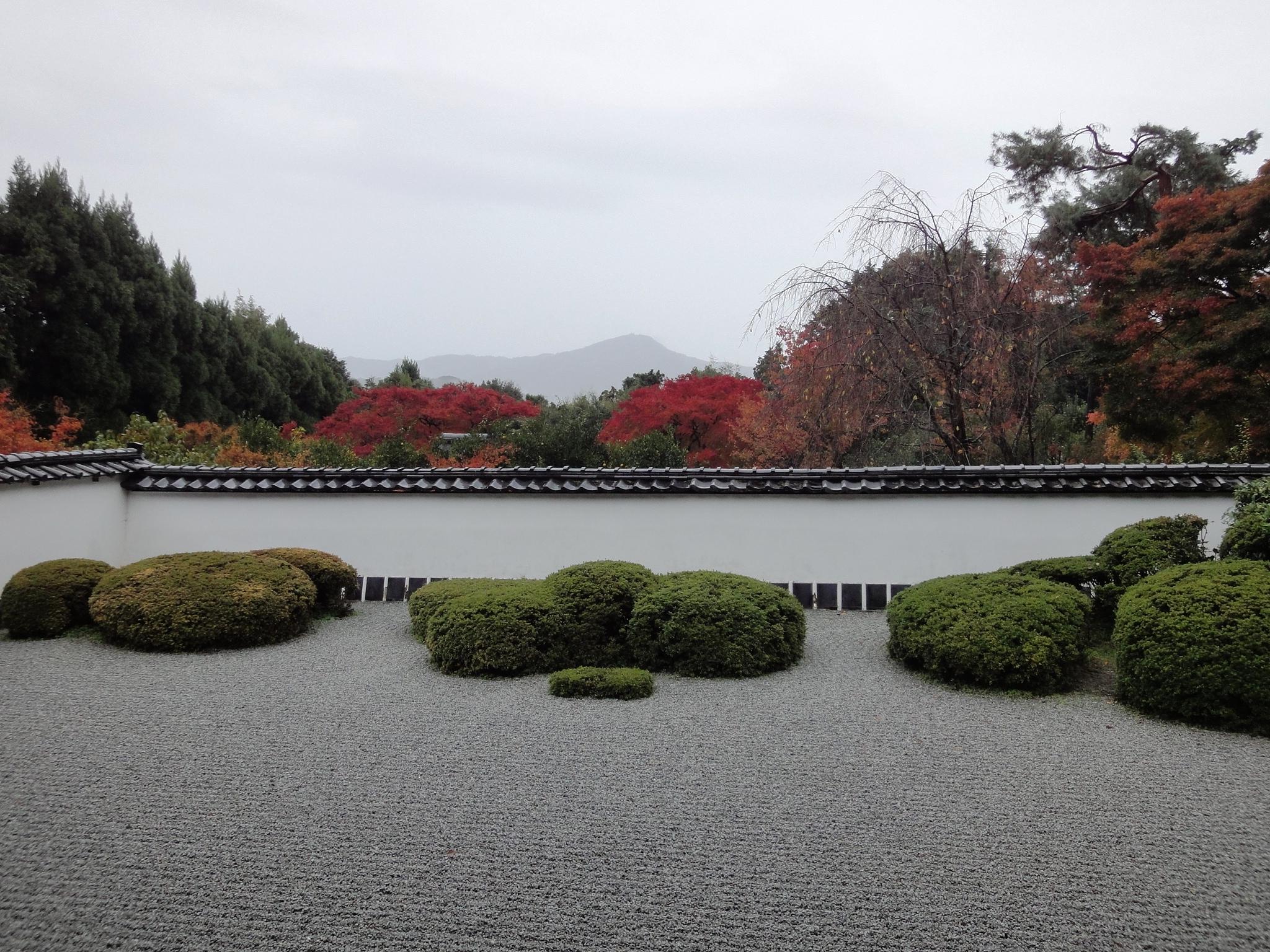 正伝寺庭園の画像