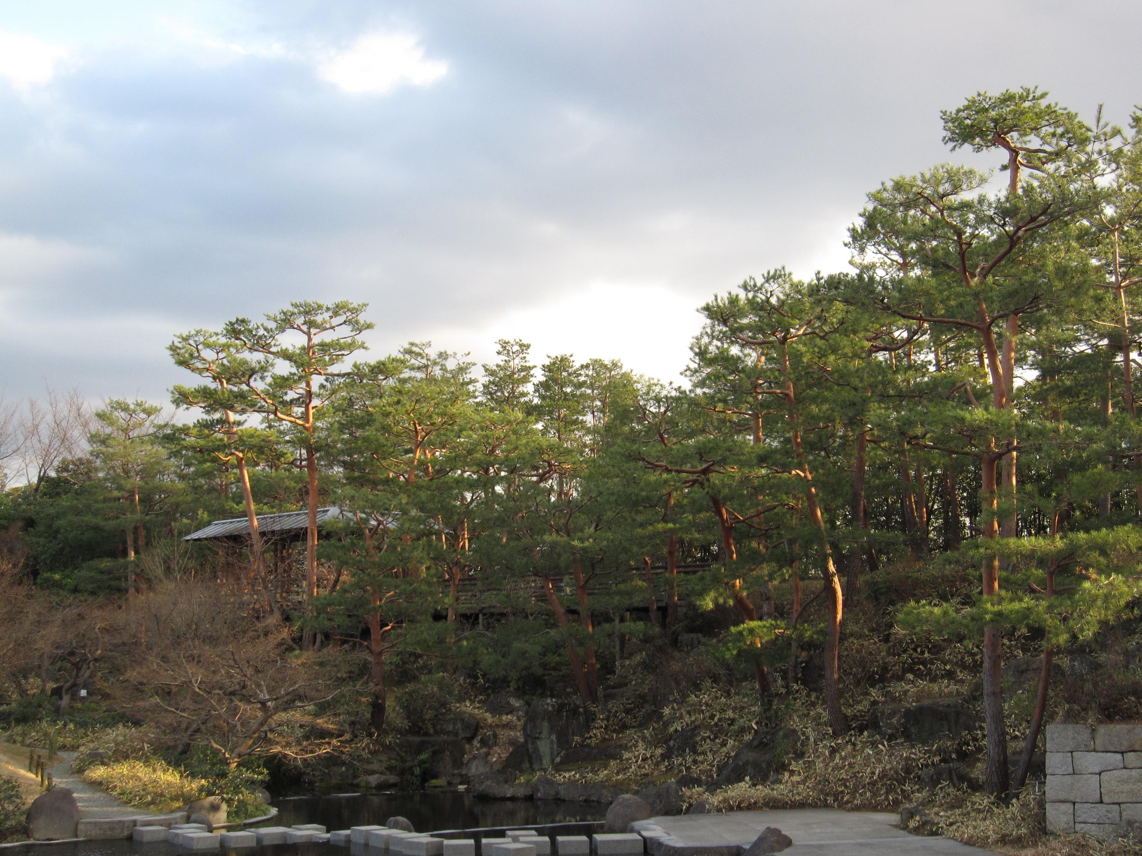 梅小路公園・朱雀の庭の画像