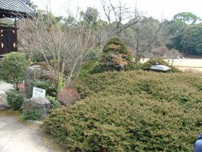 勧修寺庭園(氷池園)の画像