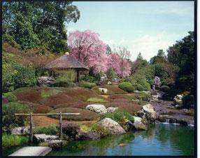 妙心寺退蔵院 方丈庭園、余香苑の画像
