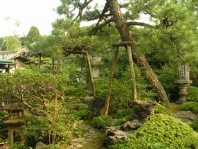 大橋家庭園(苔涼庭)の画像