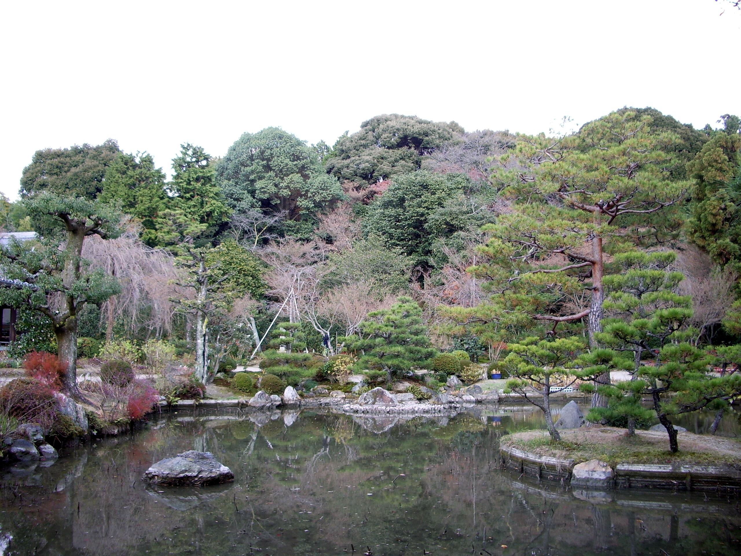 法金剛院庭園の画像