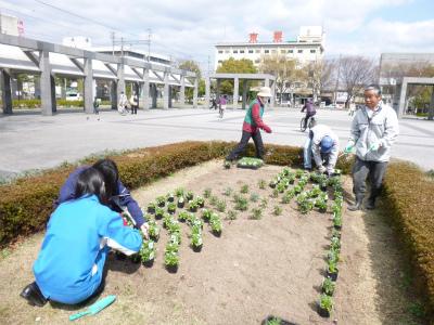 春花壇植替え (5).jpg